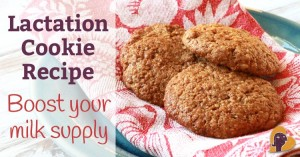 lactation-cookie-boost-breast-milk-supply